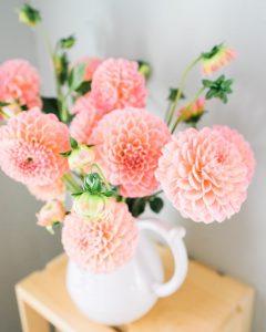 цветя 8-ми Март